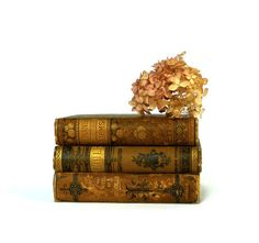 Antique Book Collection Gold Decor Set by marybethhale on Etsy, $50.00