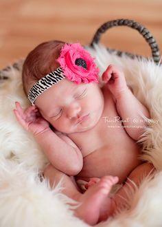 NEW Shabby flower headband on a zebra print elastic.
