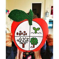 """760 Beğenme, 3 Yorum - Instagram'da Okuloncesikolik (@okuloncesikolik): """"Kurbağanın oluşum evreleri 🐸🐸@gozde_teacherr 👏🏻👏🏻✅ #okuloncesikolik"""" Science For Kids, Art For Kids, Crafts For Kids, Kid Art, Preschool Art Activities, Preschool Education, Toy Craft, Olay, Pre School"""