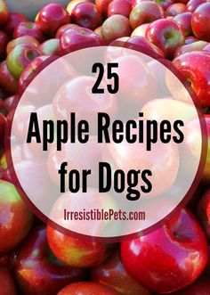 25 Apple Recipes for