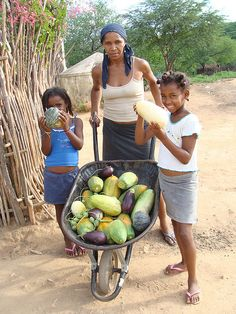 Woman farmer from Northeast Brazil by farmingmatters, via Flickr