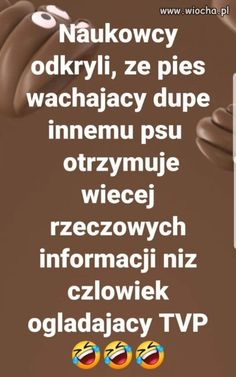 Odkrycia naukowe Weekend Humor, Funny Memes, Jokes, Best Quotes, Funny Pictures, Happy, Fitness, Haha, Quote
