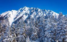 Download wallpapers Nagano, Japan, mountains, winter, snow, mountain winter landscape