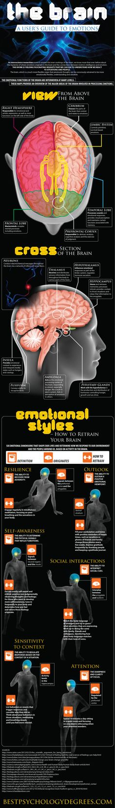 The Brain - A User's Guide to Emotions via Medical Infographics
