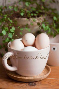 Blomsterverkstad: Eggs, eggs, eggs