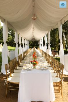 tent lining/draping