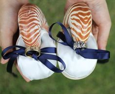 Nautilus Shell Ring Bearer Pillow for a Beach Wedding