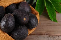 The latest news, photos and videos on Avocado is on POPSUGAR Beauty. On POPSUGAR Beauty you will find news, photos and videos on beauty, style, and Avocado. Avocado Leaves, Avocado Tree, Guacamole, Kitchen Time, Kitchen Hacks, Fast Growing Trees, Popsugar Food, Comida Latina, Best Food Ever