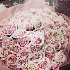 108本の薔薇の意味。 「プロポーズ」