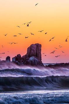 Celebrating the sunrise seascape and pounding waves Beautiful Sunset, Beautiful World, Beautiful Places, Beautiful Birds, All Nature, Amazing Nature, Landscape Photography, Nature Photography, Travel Photography