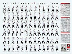 Tai Chi Chuan Short Form Poster by Roger Cotgreave