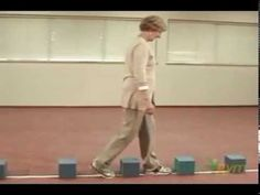 Balance Exercise - Falls and the elderly: Stepping Exercises