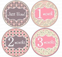 FREE GIFT Monthly Baby Stickers Baby Month Stickers Baby Girl Month Stickers Monthly Photo Stickers Monthly Milestone Stickers by BabySmilesBoutique on Etsy https://www.etsy.com/listing/121138542/free-gift-monthly-baby-stickers-baby