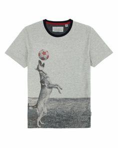 Dog and football graphic Tshirt - Grey Marl | Tops T-shirts | Ted Baker
