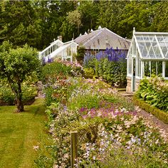 Garden, cottage with glass greenhouses. The impressive spires of Delphinium 'Pacific Giant' and a profusion of old-fashioned moss roses are an attractive foil to a pair of restored greenhouses. What Is Landscape, Landscape Design, Garden Design, Landscaping Tips, Garden Landscaping, Gardening Courses, Gardening Services, Moss Garden, Greenhouse Gardening