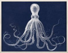 Lord Bodron's Vintage Octopus, Vintage Reproduction