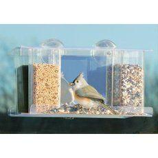 Bird Feeder Nature Seed Food Windows Port Ledge Spring
