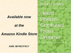 The NEW book by Brian is available now at the Amazon Kindle Store