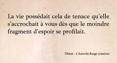 Aurochs Rouge - Chimeterre T1 par Tibéon Citation 10