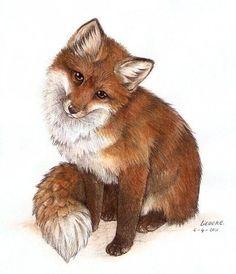 48 New Ideas Tattoo Watercolor Fox Deviantart Animal Paintings, Animal Drawings, Baby Animals, Cute Animals, Fox Images, Fox Painting, Fox Illustration, Illustrations, White Kittens