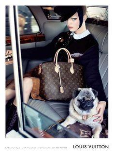 The pug sells it. Louis Vuitton, Fall/Winter PUG sells it! Lv Handbags, Louis Vuitton Handbags, Designer Handbags, Vuitton Bag, Amor Pug, Daphne Groeneveld, Pugs And Kisses, Pug Love, Fur Babies