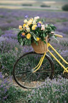 South of France Wedding lavender field wedding lavender wedding ideas lavender inspired wedding wedding flowers utah calie rose bicycle flowers vintage bicycle with flowers