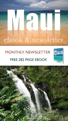 Get free access to our Maui Ebook by signing up for the monthly newsletter. #maui #mauinewsletter #mauiebook #mauibook #mauiguide #mauiguidebook Newsletter Subscription, Okinawa, Phuket, Guide Book, Oahu, Maldives, Free Ebooks, Travel Inspiration, Greece