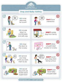 Dog + baby safety