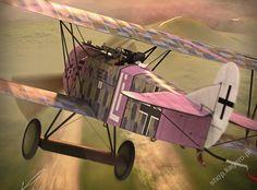 Fokker D.VII, Rudolf Stark, 11+ kills, 1918. . .