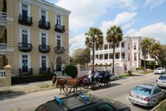 3 Best Free Outdoor Activities in Charleston, SC