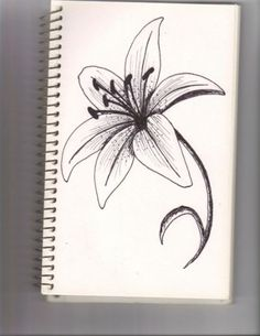 lily flower by lyddy666 traditional
