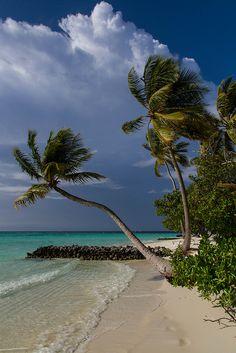 Beautiful beach in the Maldives | Credit: Sonja Pieper