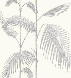 Palm Wallpaper by Cole & Son | Jane Clayton