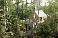 Spahaus cabin with a gabled roof in the forest