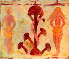 medieval manuscript equating the 'tree of life' with the amanita mushroom.
