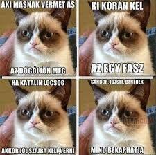 "Képtalálat a következőre: ""grumpy cat magyarul felirattal"" Grumpy Cat Quotes, Funny Grumpy Cat Memes, Funny Cats, Cat Qoutes, Funny Humor, Animal Jokes, Funny Animal Memes, Funny Animals, Geek Humor"
