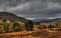 The Cairngorms, Scotland. How can anyone not say this is beautiful?