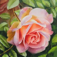 Watercolor Painting of a soft pink rose by Doris Joa - Free Tutorial in watercolor