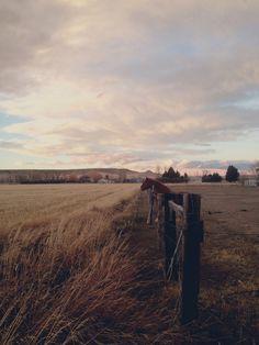 Crisp air, life on the prairies