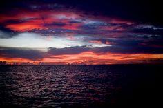 tahiti--surfer paradise