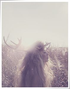 Wild Hair, sunshine, flowers & lovely weeds, with antlers. a pretty photo SCAND