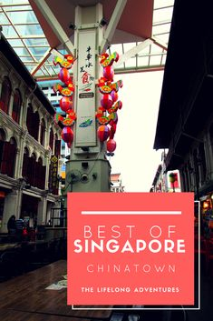 Best of Singapore - Chinatown and the Satay Club