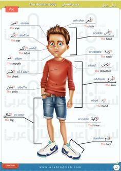 Arabic Vocabulary By Lisan Arabi - Quotes - Best Knitting Arabic Verbs, Arabic Phrases, Arabic Alphabet Letters, Arabic Alphabet For Kids, English Language Course, English Language Learning, Learn Arabic Online, Arabic Lessons, Arabic Language