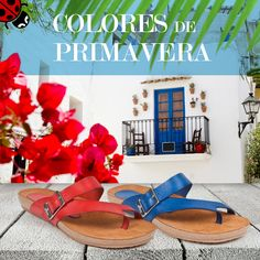 La #primavera es una época estupenda para lucir colores vivos como el rojo y el azul #yokono Footwear, Spring Colors, Spring Summer 2015, Red, Blue Nails, Bold Colors, Shoe, Shoes, Zapatos