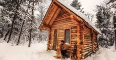 If you have ever dreamed of building a cabin in the woods and living off-grid then you're going to appreciate seeing this cabin being built in the wilderness of Canada. How To Build A Log Cabin, Building A Cabin, Shawn James, Solar Panel Battery, Off Grid Cabin, Cabin In The Woods, Wood Interiors, Architecture, Bird Houses