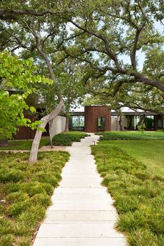 mark word landscape design / lakeview house, austin (architecture: alterstudio)