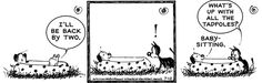 Mutts for 7/12/2016