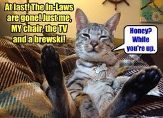 At last! The In-Laws are gonw! Just me, MY chair, the TV and a brewski! #catoftheday