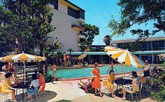 Florida history: Lost Langford Hotel lives on in icon votes, DVD history - Orlando Sentinel Florida Hotels, Florida Tourism, Vintage Florida, Old Florida, Central Florida, Winter Park Florida, Metal Pool, Vintage Hotels, Vintage Travel