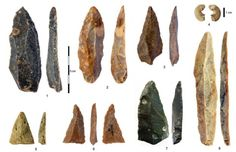 """Two studies report new Homo sapiens fossils from the site of Bacho Kiro Cave in Bulgaria. """"The Bacho Kiro Cave site provides evidence for th. Early Humans, First Humans, Anthropologie, Bulgaria, Human Base, Types Of Humans, Cave Bear, Homo, Bones"""